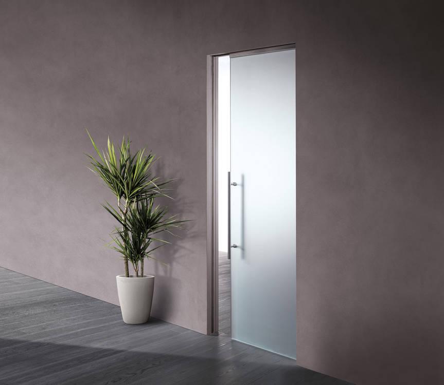 privacy glass pocket door