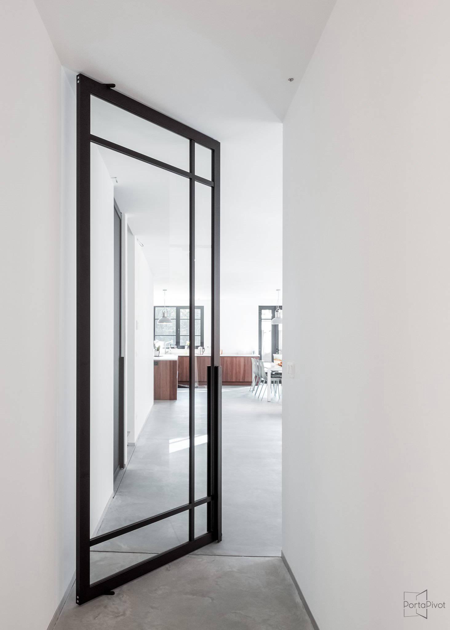 Tecno Crittall style pivot door in black finish img 17