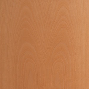 interior door finish - beech