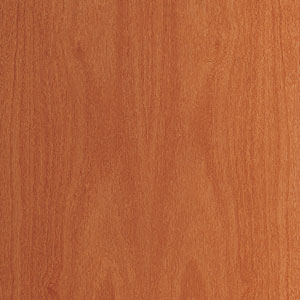 interior door finish - cedar