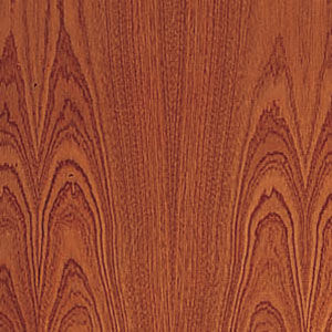 interior door finish - sapele